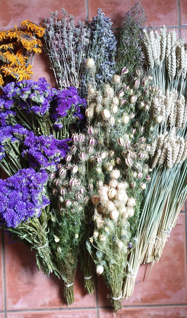 Dried Flowers & Wreaths